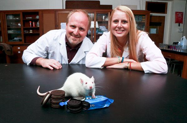 """Бисквитките """"Орео"""" активират повече неврони на удоволствието от кокаина"""