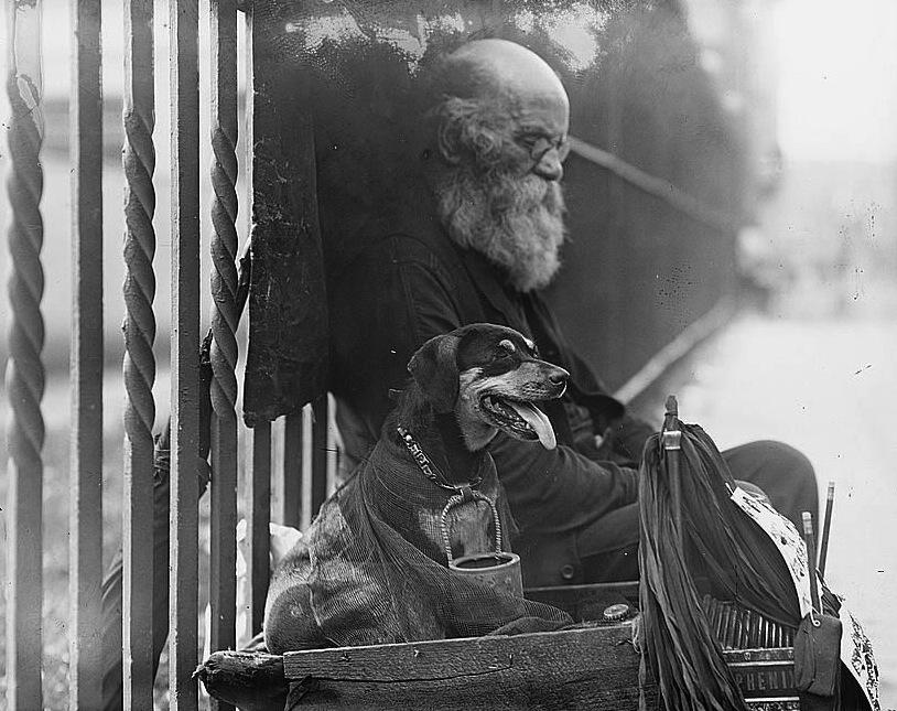 Homeless Elderly 2