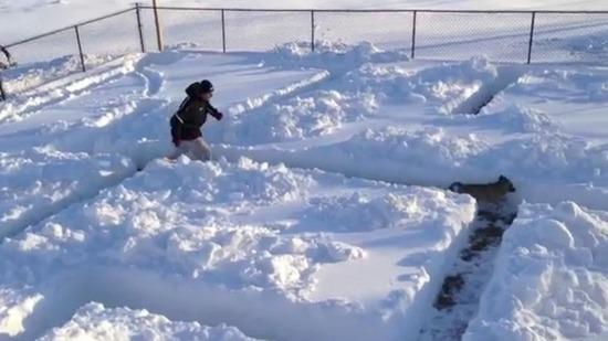 Идея за скучните зимни дни- Куче в снежен лабиринт (ВИДЕО)