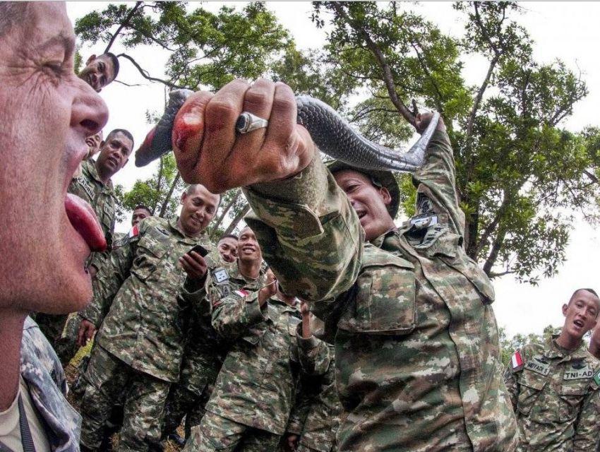 Военното обучение за влизане в Пентагона! Не те съветваме да го правиш!
