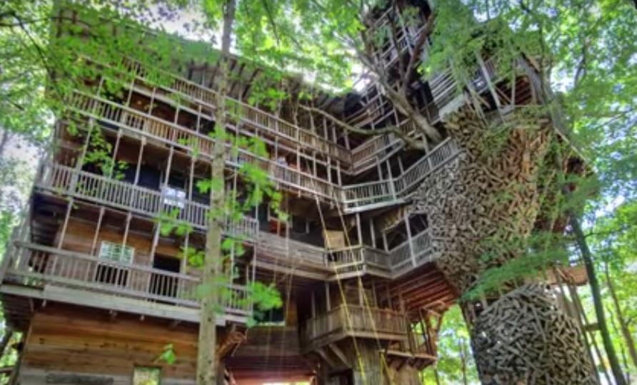 Най-голямата дървена къща (ВИДЕО)
