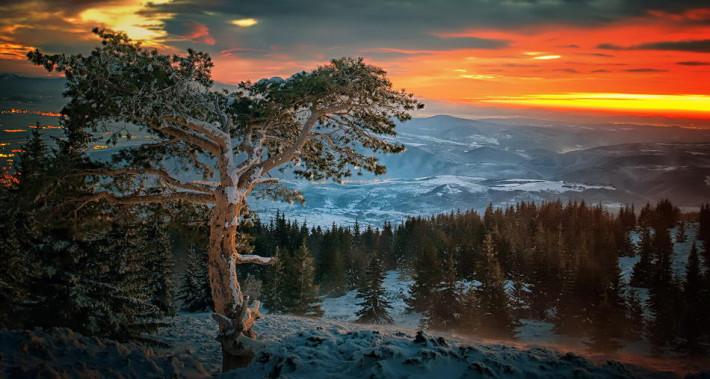 Изгрев над Витоша, Снимка: Nikolay Stoilov