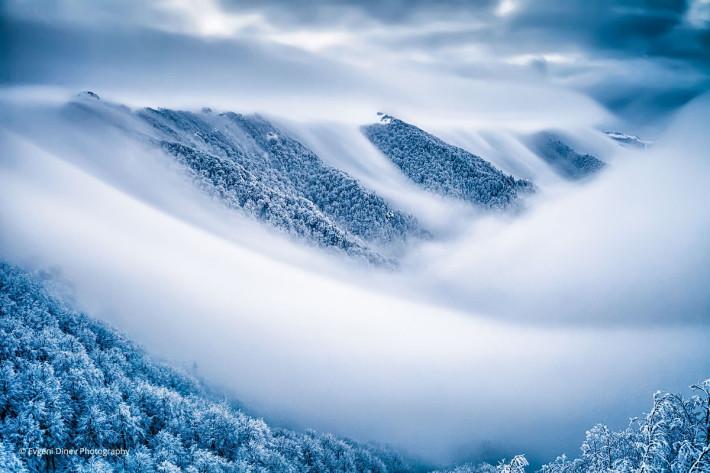 Небесно кралство. Централен Балкан, Снимка: Evgeni Dinev