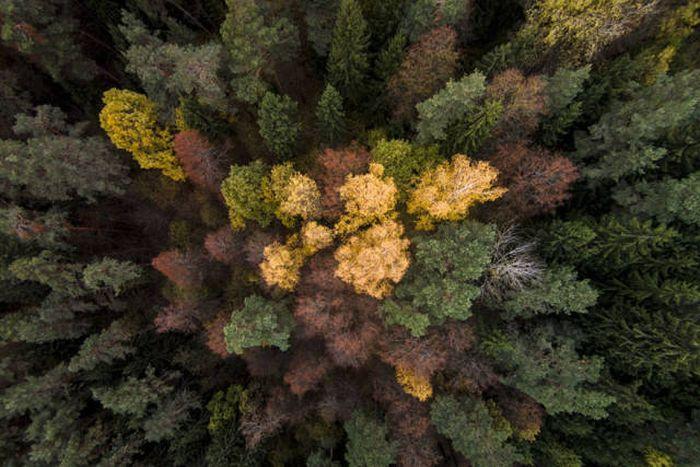 drone_photos_17