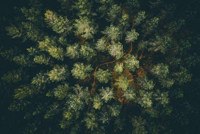 drone_photos_20