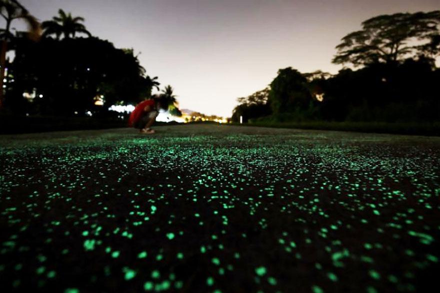 Сингапур тества светеща алея за пешеходци (СНИМКИ)