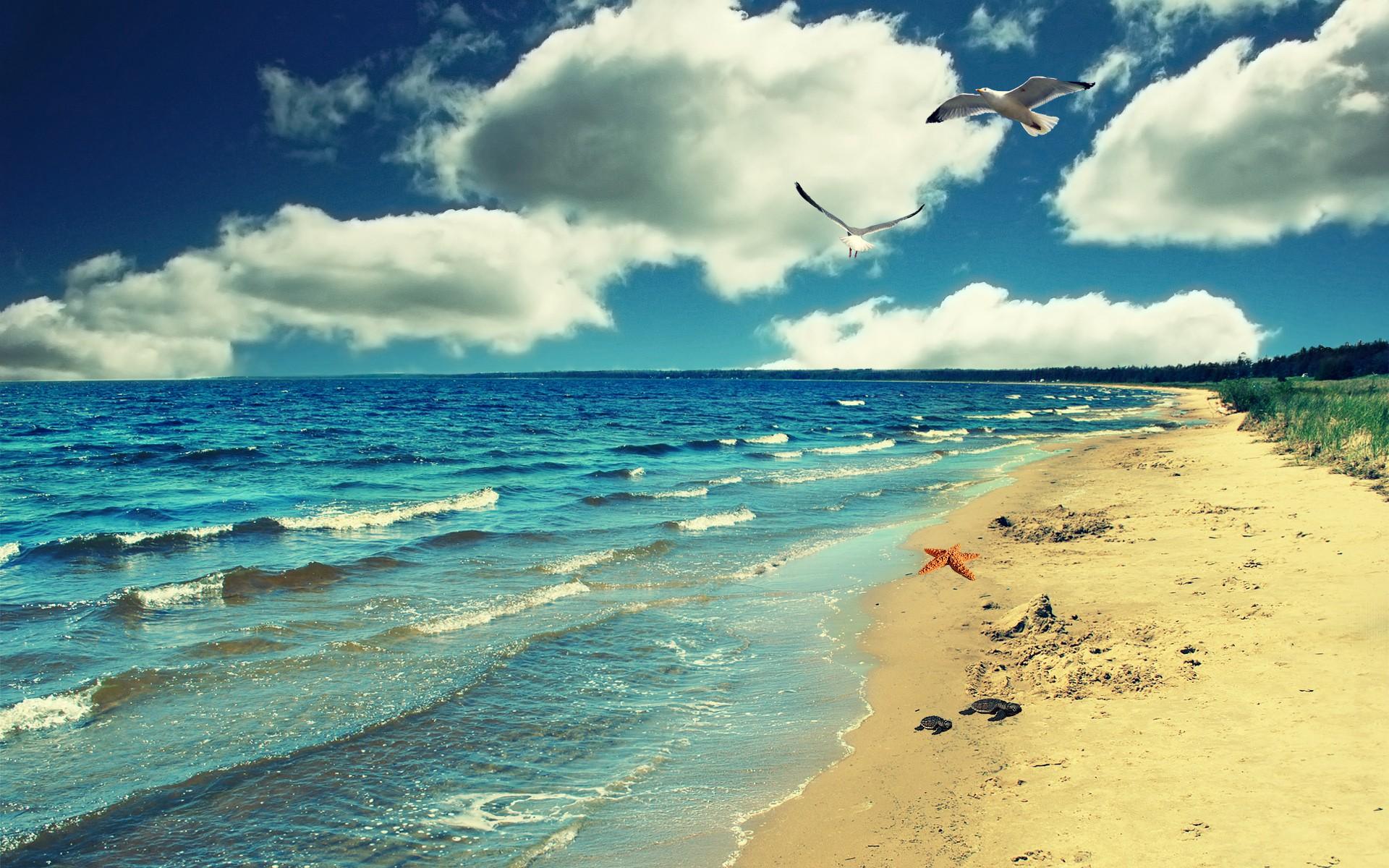 5 неща, които непременно да направиш ден преди почивката на морето