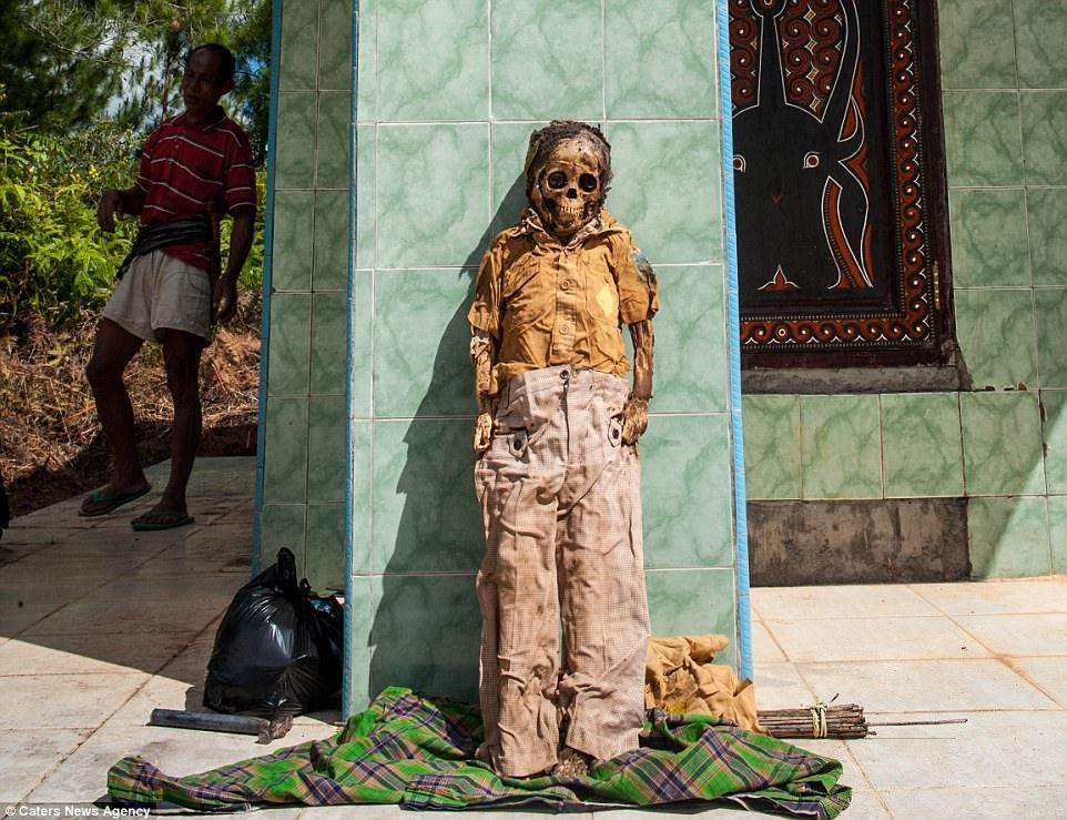 О-в Сулавеси – мястото, където мъртвите оживяват по желание на жителите (18+)
