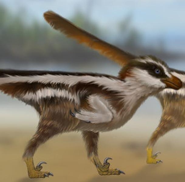 Откриха стъпки на динозавър колкото врабче