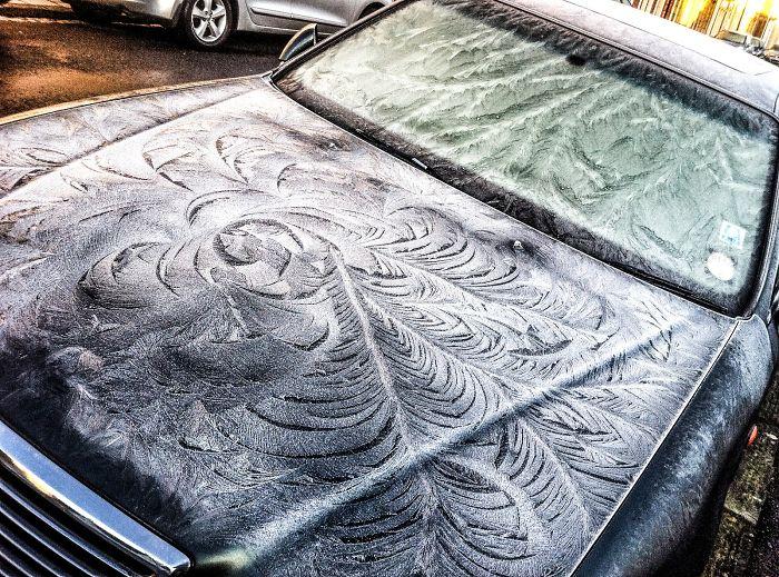 Замръзнали коли като предмети на изкуството