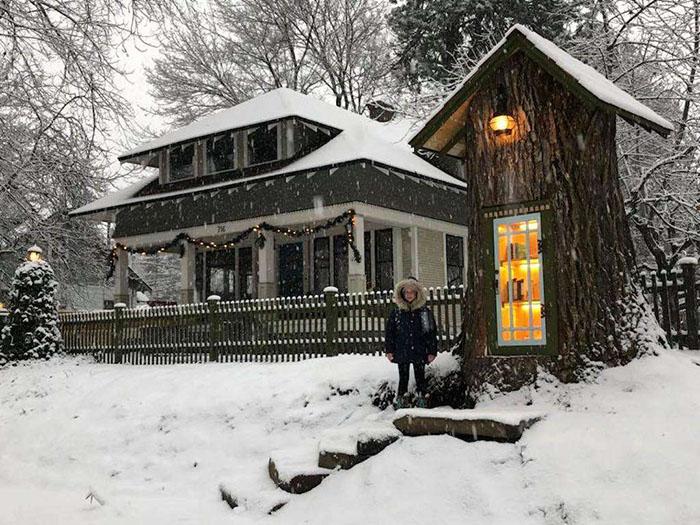 Уникално: Превърнаха старо дърво в безплатна библиотека (СНИМКИ)
