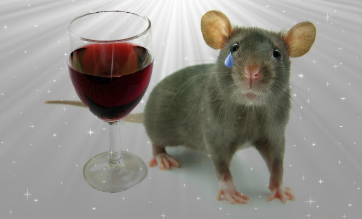 Учени излекуваха опитни мишки от алкохолизъм