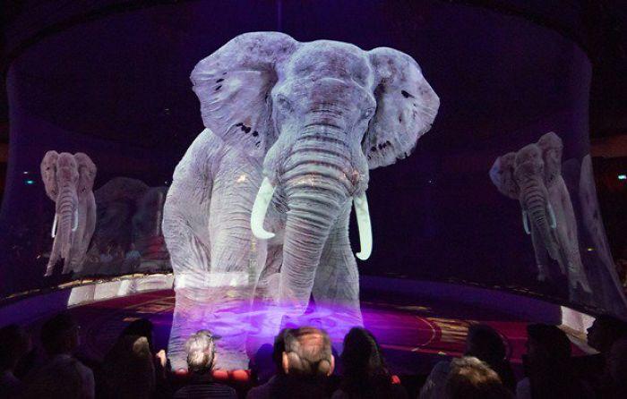 Цирк в Германия използва холограми на животни (ВИДЕО)