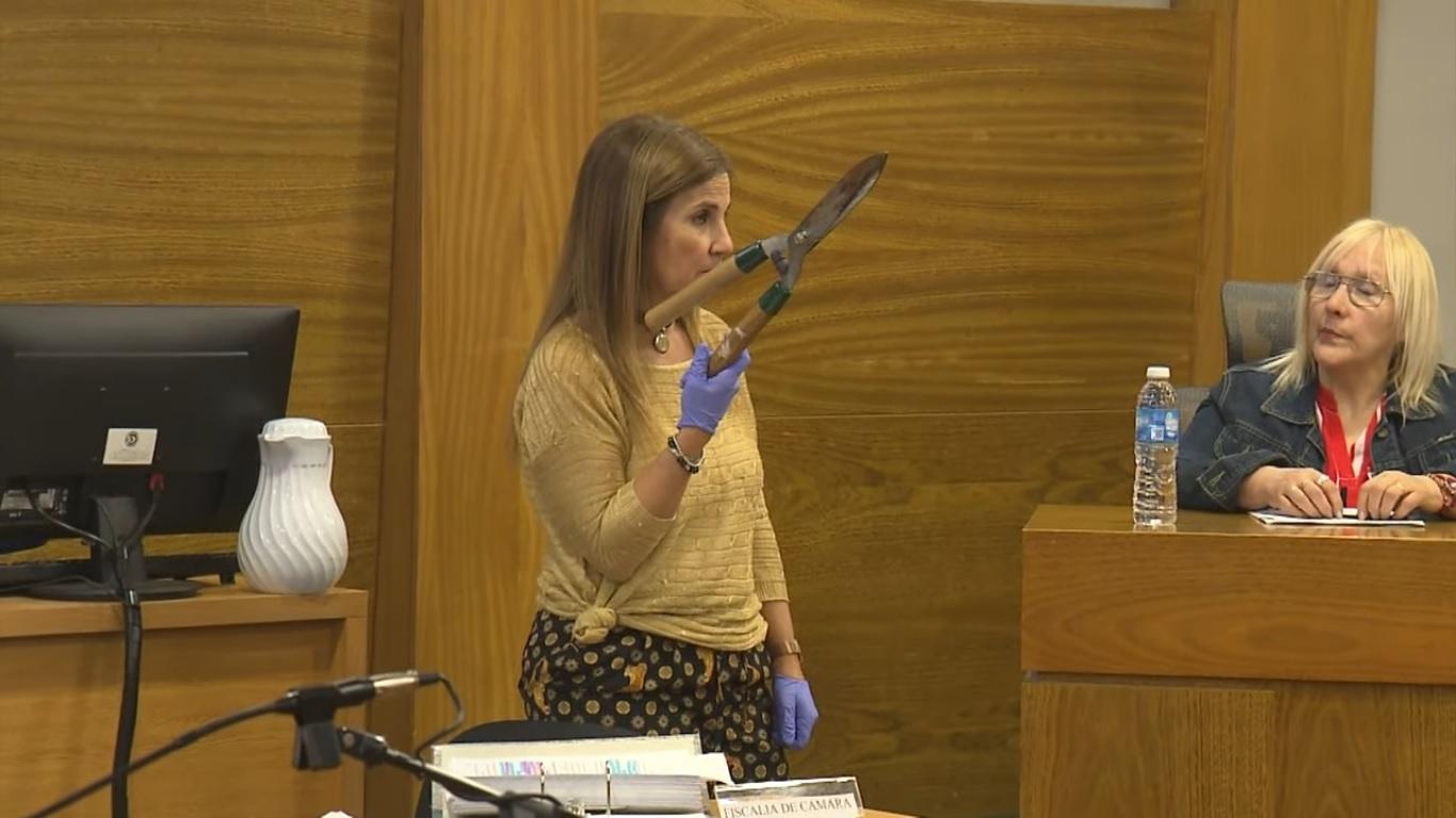 13 години затвор за жената, която резна шмайзерчето на мъжа си с лозарска ножица