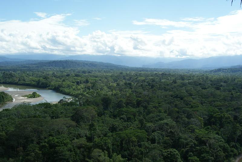 Откриха жена и трите й деца след 34 дни в неизвестност в амазонската джунгла