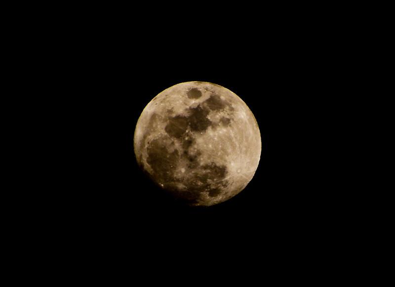 Милиардер търси приятелка за екскурзия до Луната