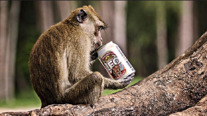 Доживотен затвор за маймуна-пияница