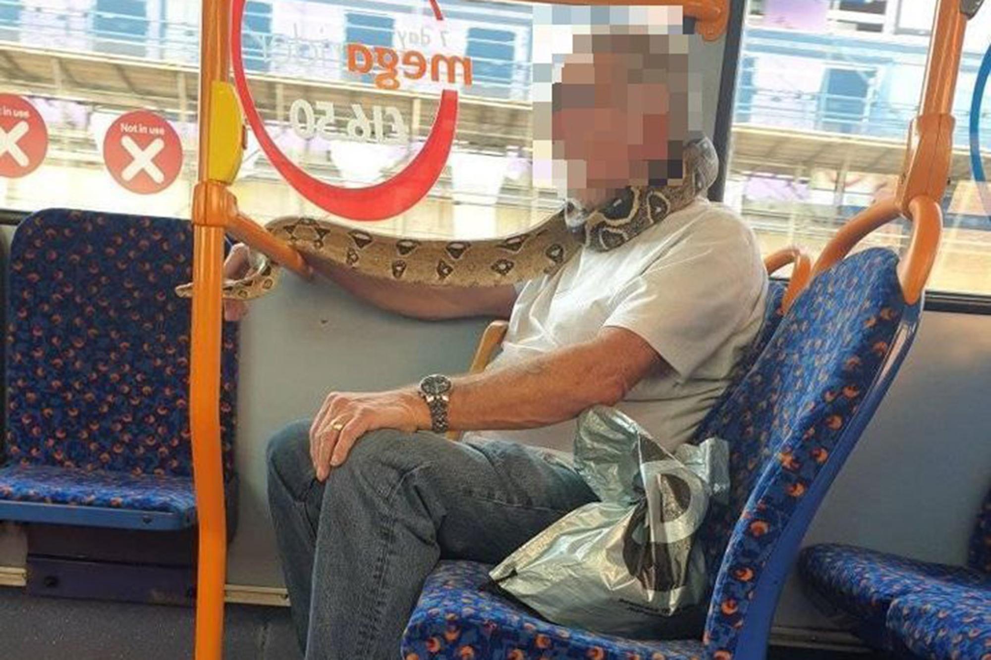 В автобус мъж си покри лицето със змия вместо с маска