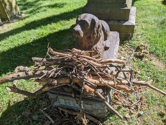 Хора оставят пръчки на гроба на кучето Рекс, починало преди 100 години (СНИМКИ)