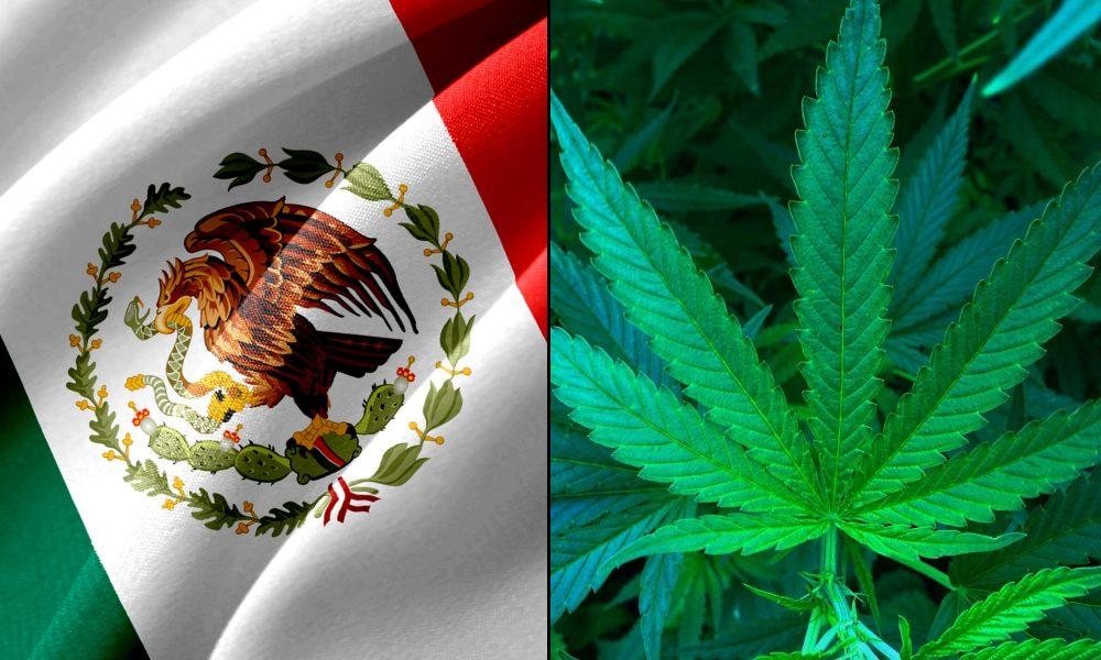 Мексико легализира марихуаната