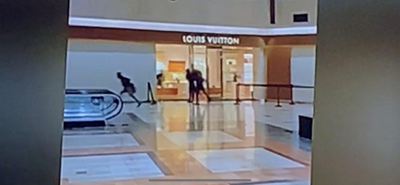 Обир на магазин Luis Vuitton в Чикаго (ВИДЕО)