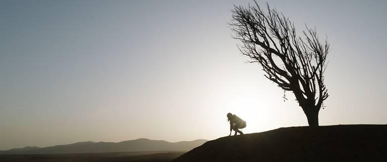 Вечните променят света ни от 5 ноември